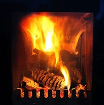 Timber burning in stove xtralec