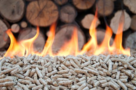 Biomass is the cheapest, most reliable renewable energy source