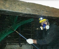 Master Chimney Sweep profile 5